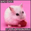 My Raspberry